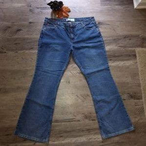 Junior's plus size Arizona flare leg jeans